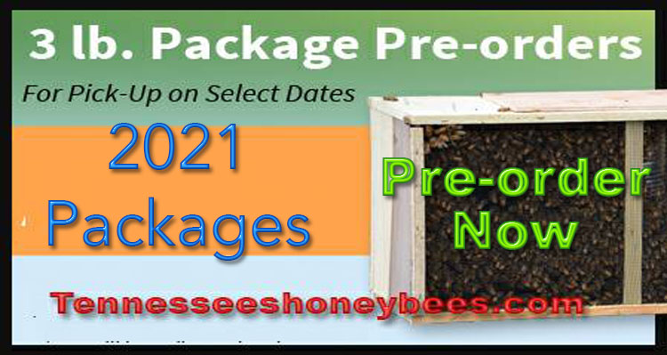 3 lb Package of Honey Bees - 2021