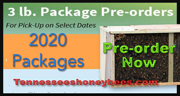 3 lb Package of Honey Bees - 2020
