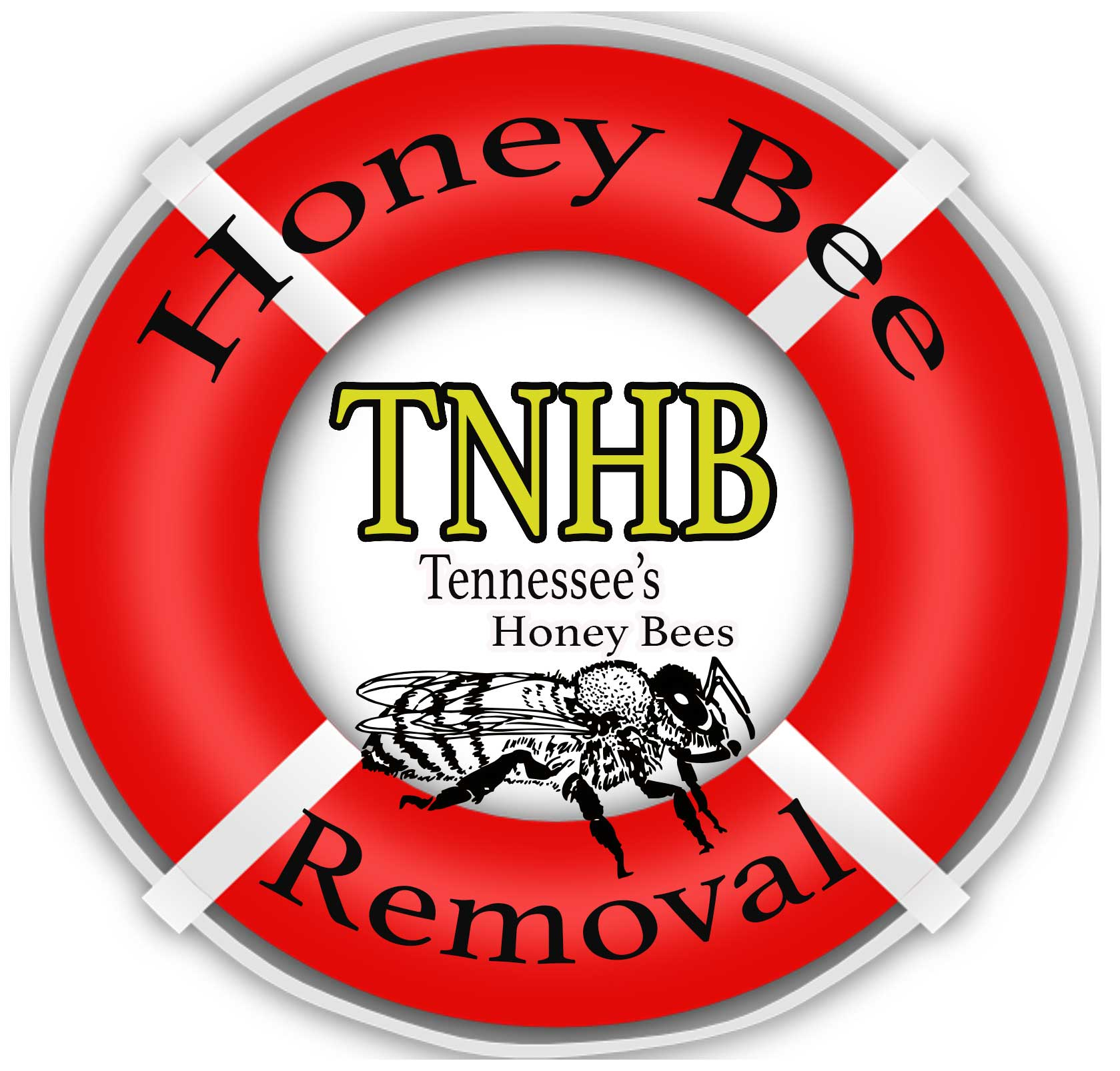 Tennessee's Honey Bees - Honey Bee Rescue Services